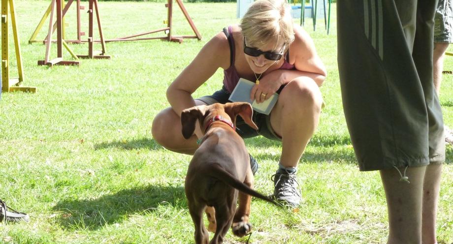 Susanne Hibinger und Welpenschule Rhodesian Ridgeback Camino