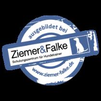 Logo ausgebildet bei Ziemer & Falke